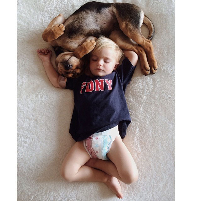 toddle naps with puppy theo and beau instagram (3)