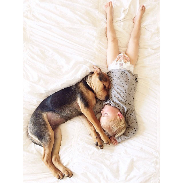 toddle naps with puppy theo and beau instagram (5)