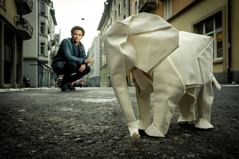 sipho mabona folds a life sized origami white elephant from a single sheet of paper (1)