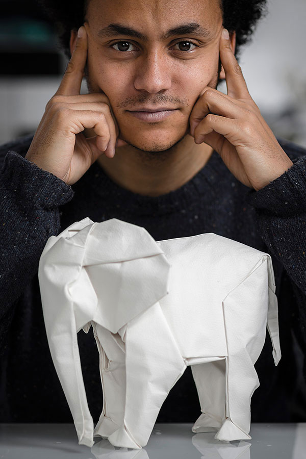 sipho mabona folds a life sized origami white elephant from a single sheet of paper (9)