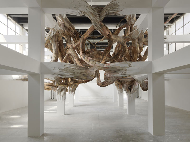 From Beams to Branches by Henrique Oliveira