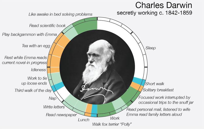 charles-darwin daily routine creative ritual