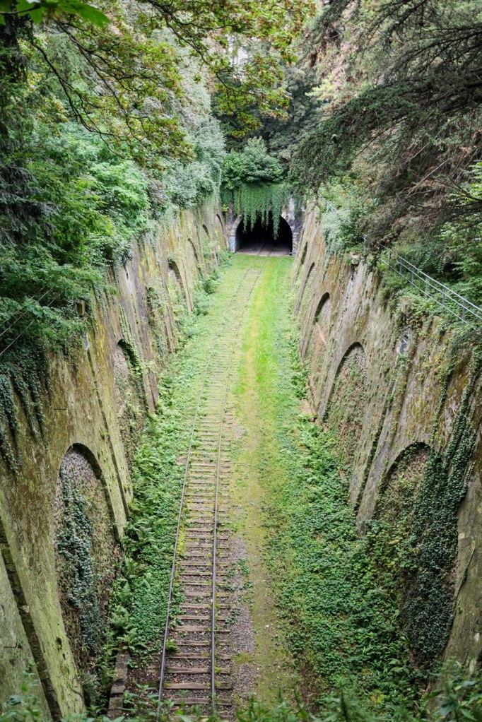 Overgrown Railway inParis
