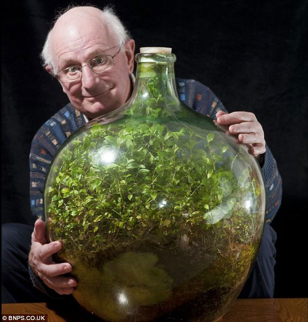 david latimer sealed bottle garden