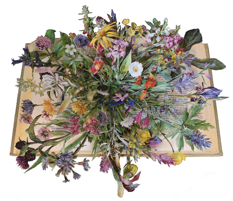 Discarded Books Transformed Into Exploding 3D Collages by Kerry Miller (2)