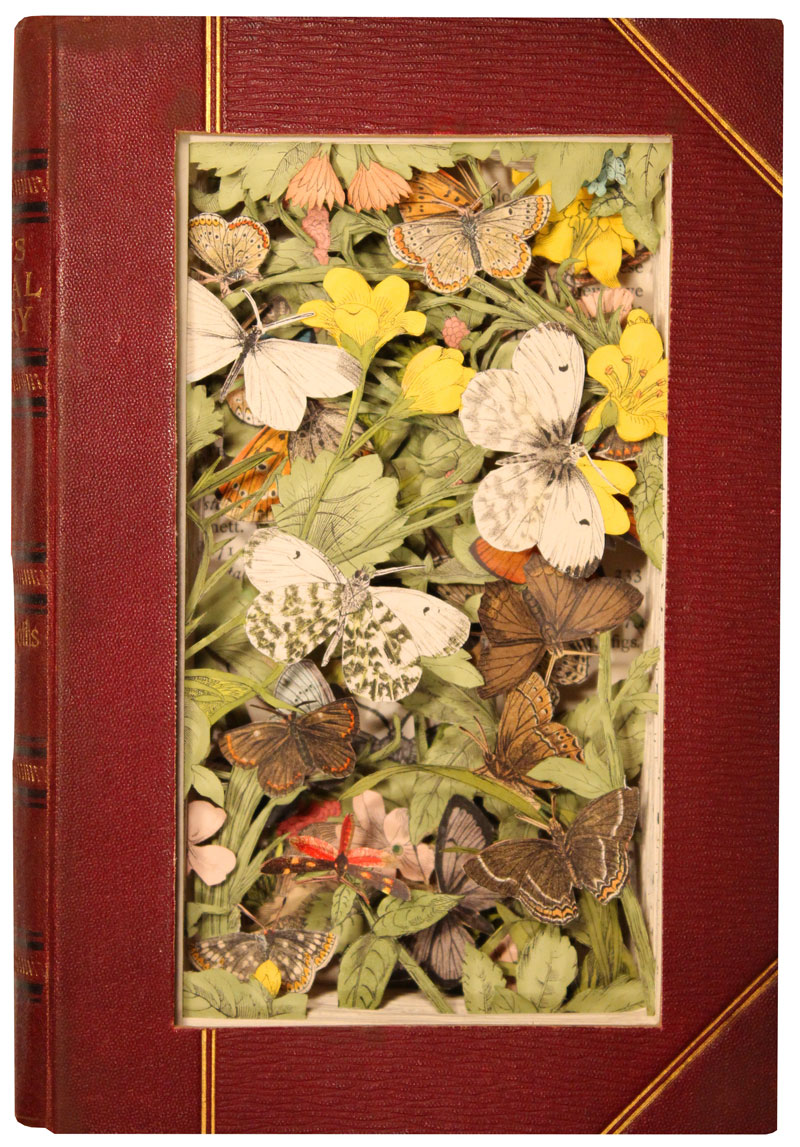 Discarded Books Transformed Into Exploding 3D Collages by Kerry Miller (5)