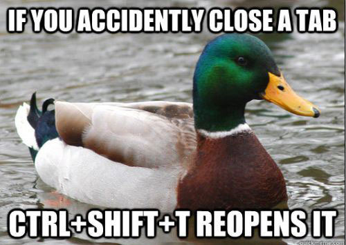 tips from the worlds smartest duck best of actual advice mallard (10)