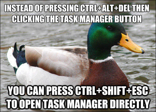tips from the worlds smartest duck best of actual advice mallard (14)