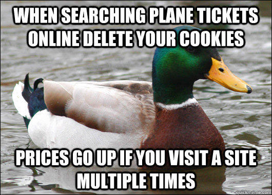 tips from the worlds smartest duck best of actual advice mallard (6)
