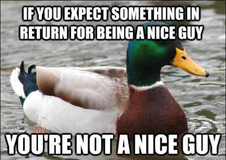 tips from the worlds smartest duck best of actual advice mallard (8)