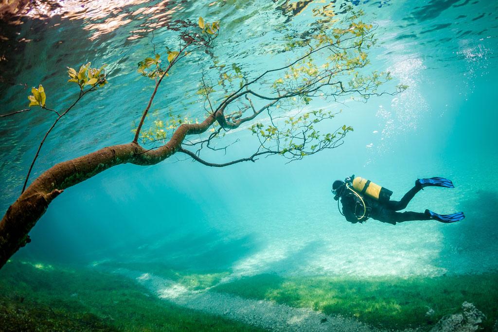 10-Diver-in-Magic-Kingdom