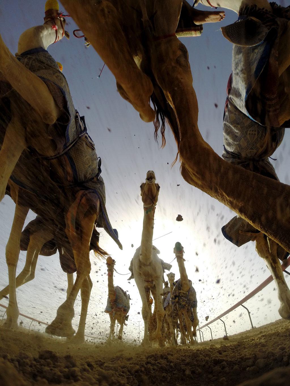 17-AL-Marmoum-Racetrack