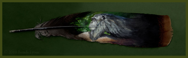 animals painted onto bird feathers by brenda lyons falcon moon studio (10)