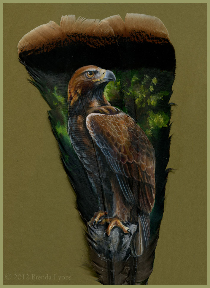 animals painted onto bird feathers by brenda lyons falcon moon studio (9)