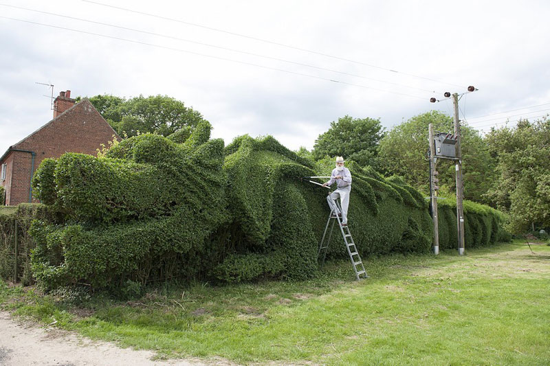 This Guy Spent 10 Years Making a Dragon-Shaped Hedge. His Reason Why isAmazing