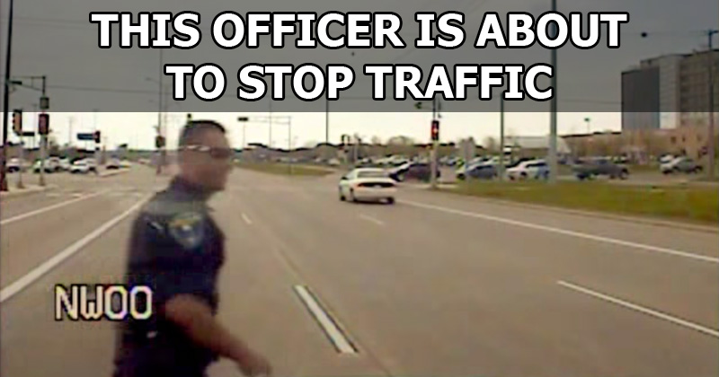 Officer Stops Traffic So Ducklings Can Safely Cross