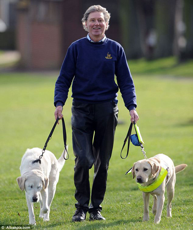 guide dog loses sight so owner gets a new guide dog for both of them (3)