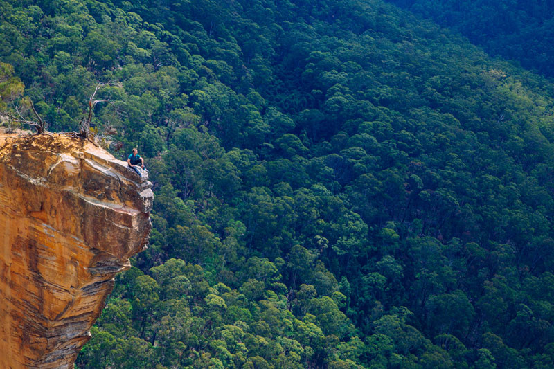 Blue Mountains Australia  City new picture : ... Day: Just Hanging Out – Blue Mountains, Australia «TwistedSifter