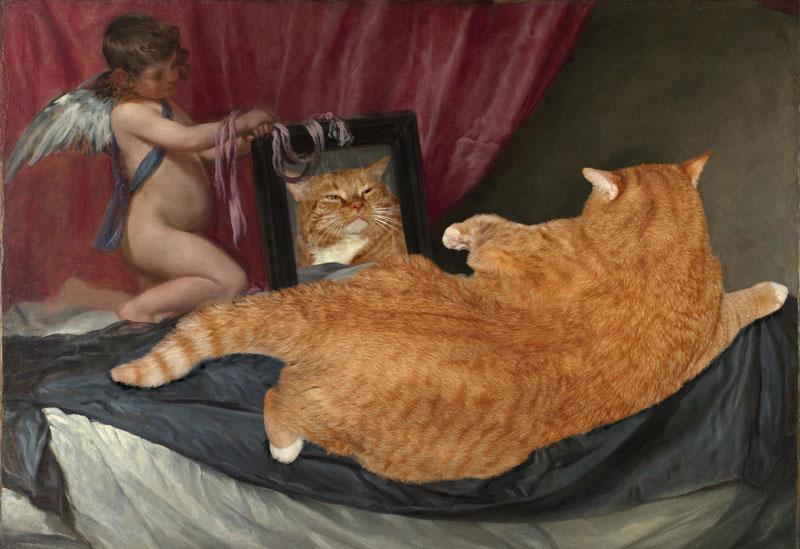 This artist photoshops her fat cat into famous artworks - Venere allo specchio velazquez ...