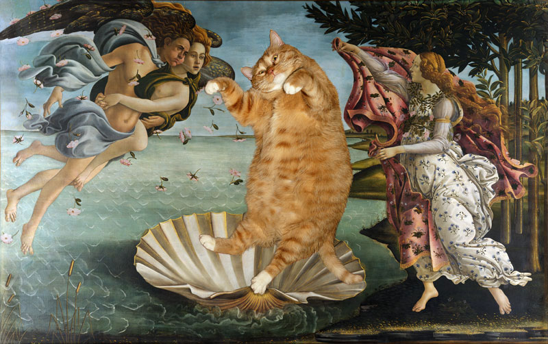 fat cat photoshopped into famous artworks (14)