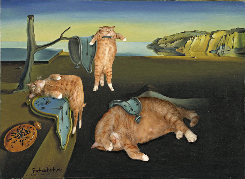 fat cat photoshopped into famous artworks (15)