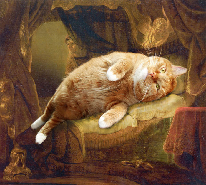 fat cat photoshopped into famous artworks (5)