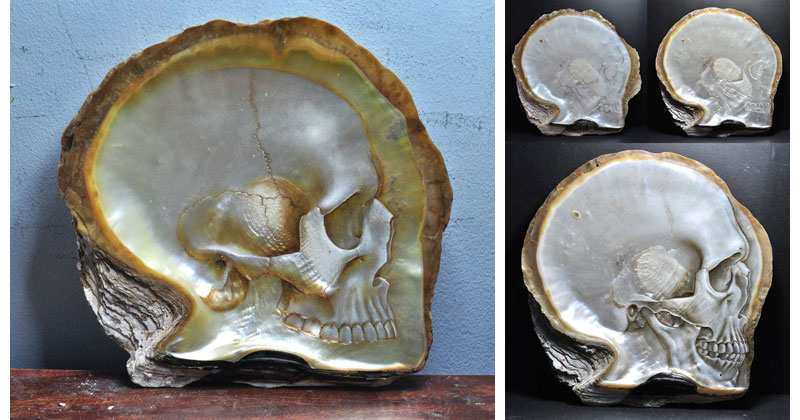 Hand carved skulls into mother of pearl shells «twistedsifter