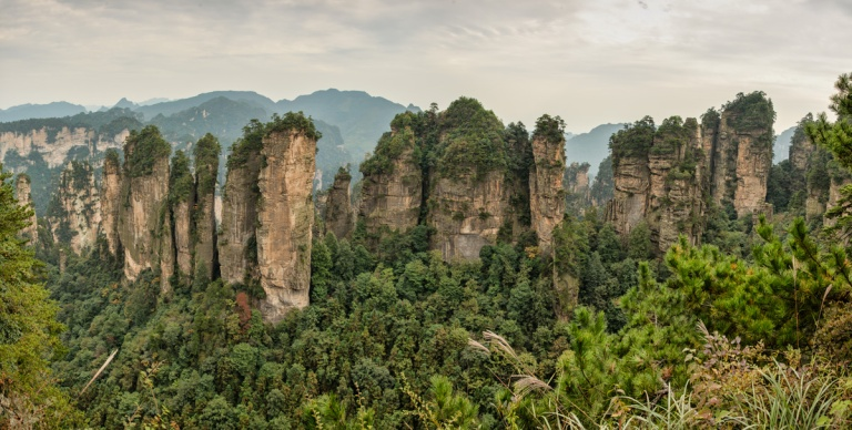 The Five Fingers Peak of Huangshizhai wulingyuan unesco world heritage (1)