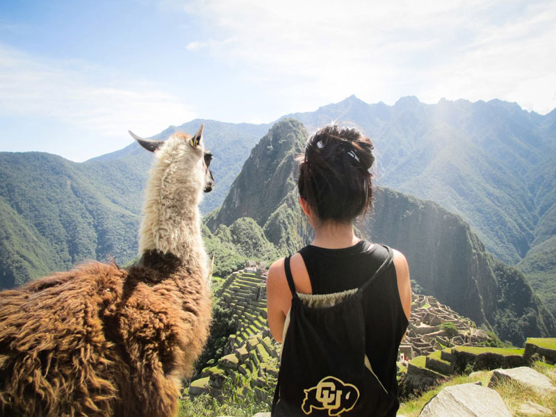 admiring machu picchu with a llama The Top 100 Pictures of the Day for 2014