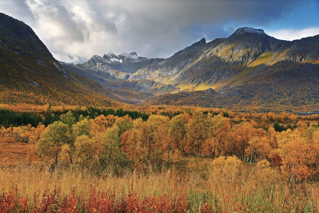 Picture of the Day: Autumn inNorway