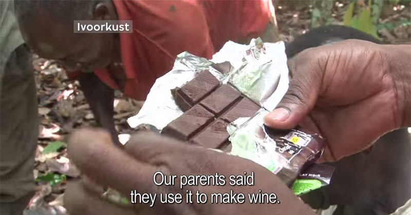 cocoa-farmers-taste-chocolate-for-the-first-time