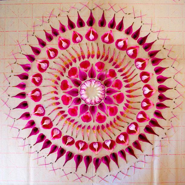 flower mandalas by kathy klein (1)