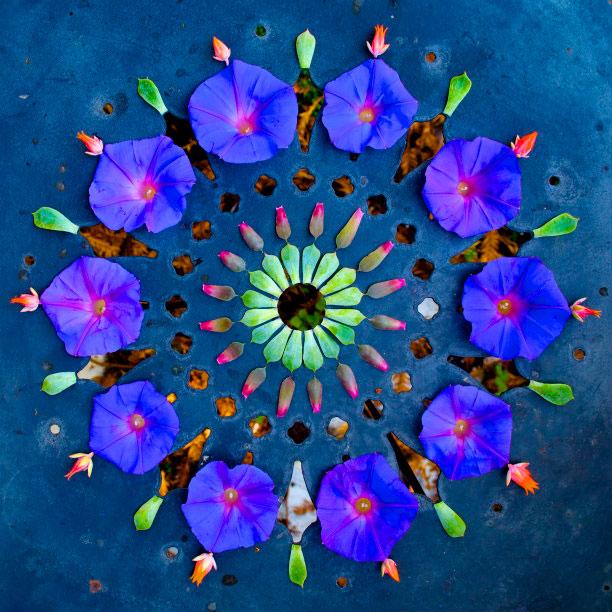 flower mandalas by kathy klein (3)