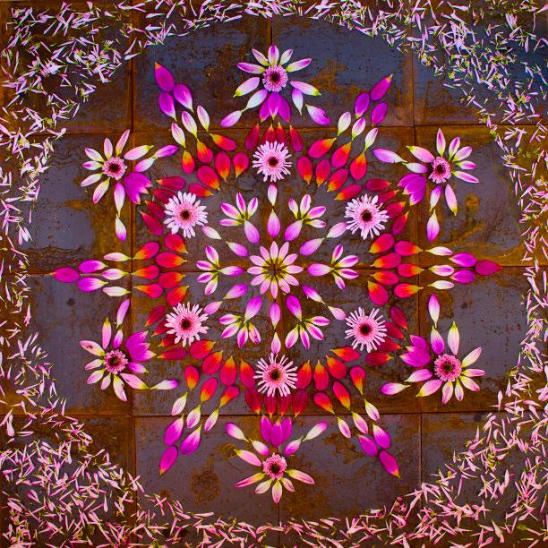 flower mandalas by kathy klein (6)