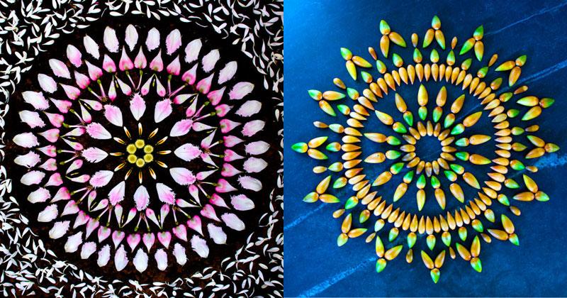 15 Flower Mandalas by KathyKlein