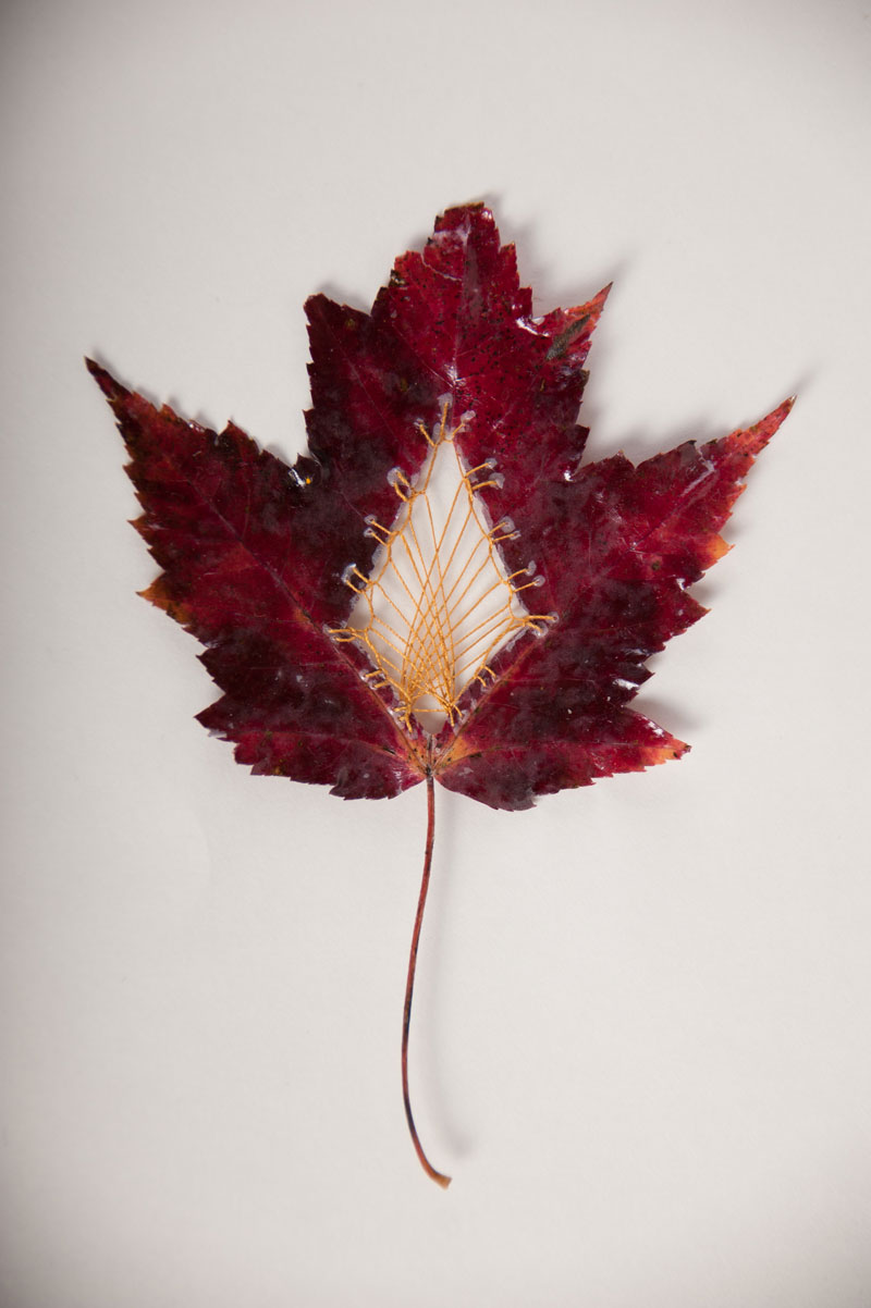 stitched leaves by hillary fayle (6)