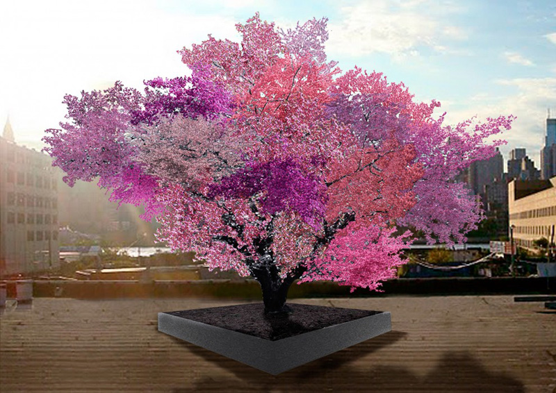 tree of 40 fruit This Tree Bears 40 Different Fruits