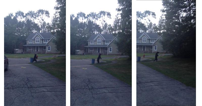Holy Crap this Bear is Walking on TwoLegs