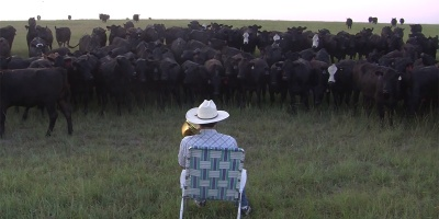 Farmer Serenades Cattle with Trombone Rendition of Lorde'sRoyals