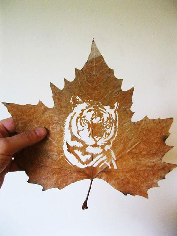 leaf cut art by omad asadi (2)