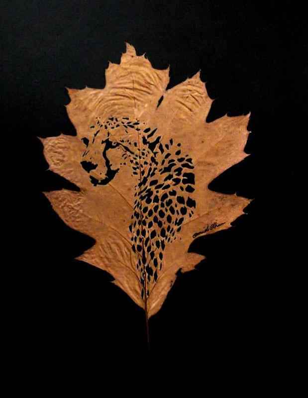 leaf cut art by omad asadi (4)