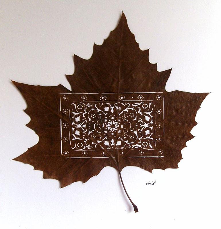 leaf cut art by omad asadi (7)