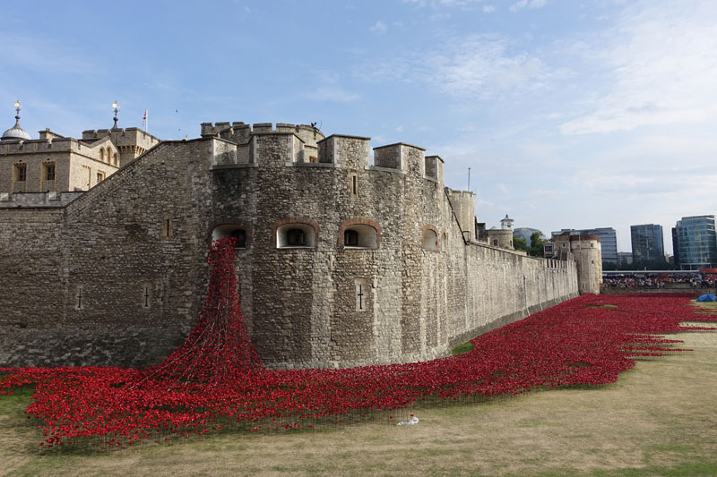 tower of londons 888246 ceramic poppies commemorate every british soldier lost in wwi 1 Artists Battle with Alzheimers Documented Through Gripping Self Portraits