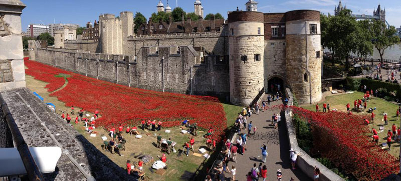 Tower of London's 888,246 Ceramic Poppies Commemorate Every British Soldier Lost in WWI (3)