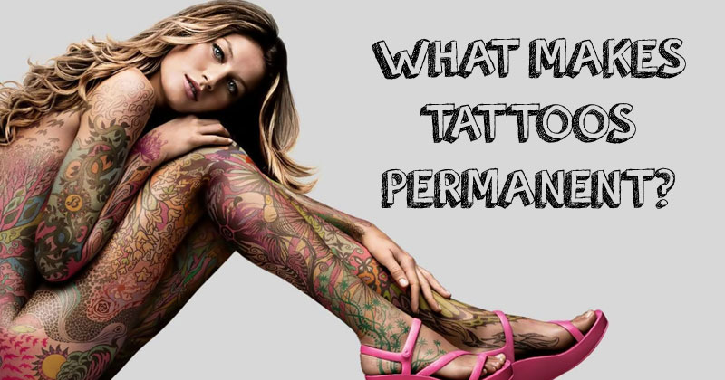 The Science Behind a Tattoo'sPermanence