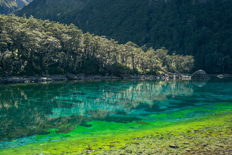 the clearest lake in the world is in new zealand twistedsifter