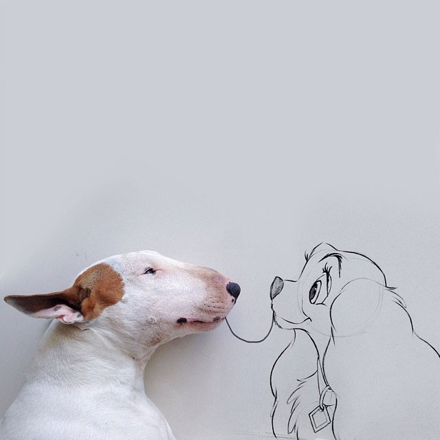 Rafael mantesso Takes Portraits of His Bull Terrier and Illustrates the Background (1)
