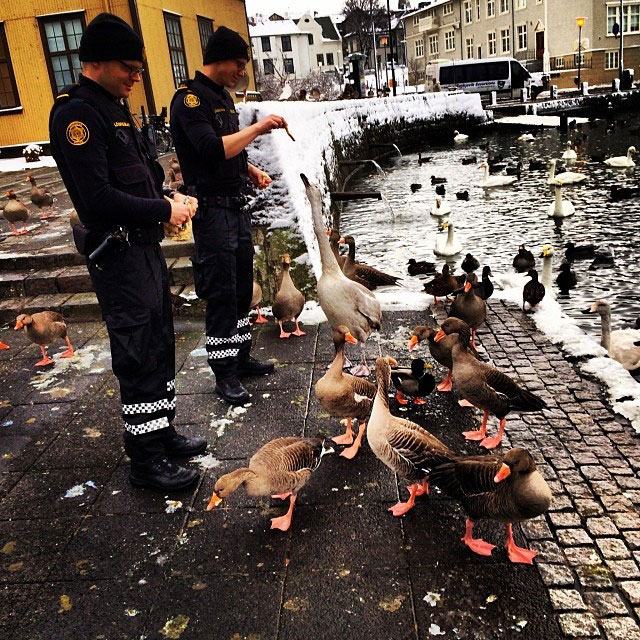 The Reykjavik Police Department's Instagram Feed is Pure Gold (2)