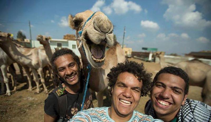 camel selfie The Shirk Report   Volume 285