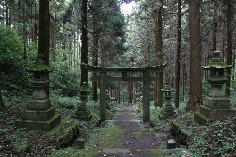 A Forest Shrine in Japan «TwistedSifter